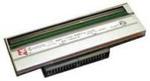Argox Термоголовка 300 dpi для X-3000